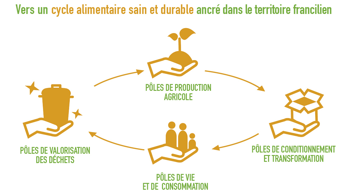 cycle alimentaire-reduit